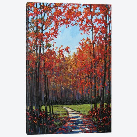 Autumn Path VII Canvas Print #PTB15} by Patty Baker Art Print