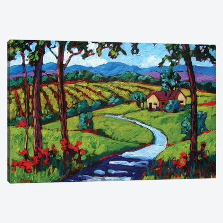 Young America Road in Summer Canvas Print #PTB160} by Patty Baker Canvas Wall Art