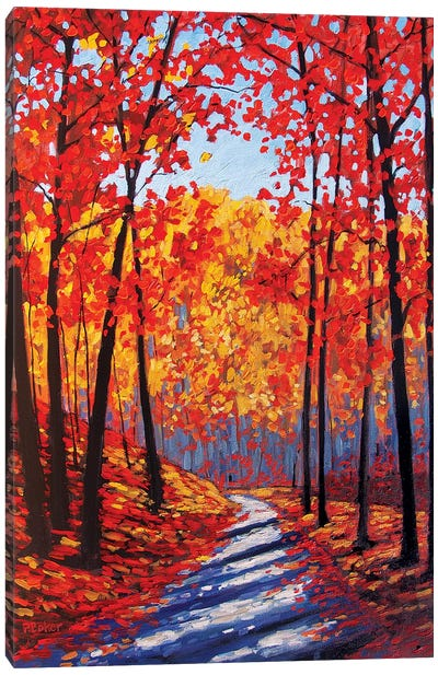 Autumn Path In The Hudson River Valley III Canvas Art Print