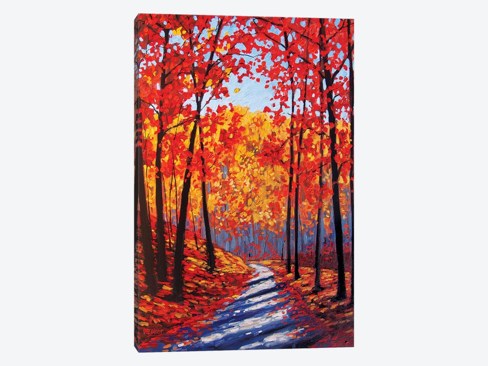 Autumn Path In The Hudson River Valley III by Patty Baker 1-piece Canvas Wall Art