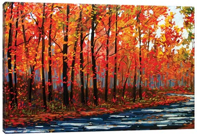 Autumn Path In The Hudson River Valley IX Canvas Art Print