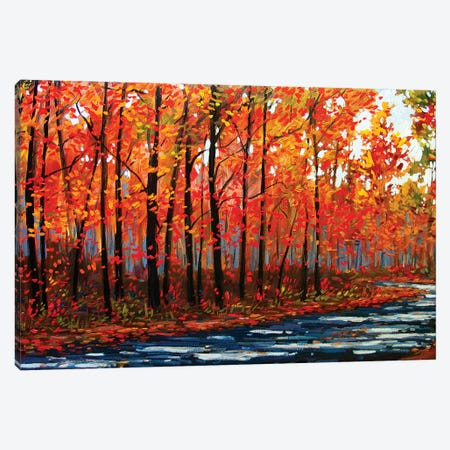 Autumn Path In The Hudson River Valley IX Canvas Print #PTB166} by Patty Baker Canvas Art Print