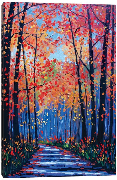 Autumn Path In The Hudson River Valley VIII Canvas Art Print