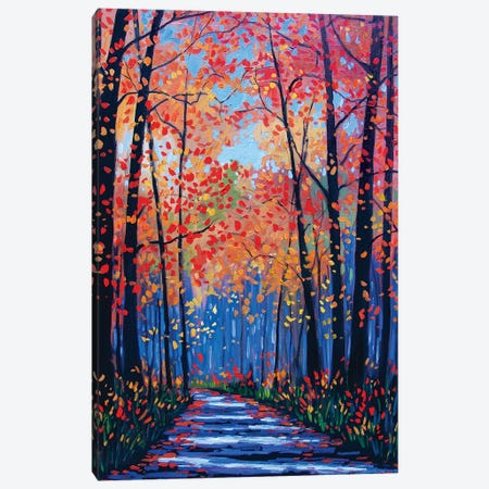 Autumn Path In The Hudson River Valley VIII Canvas Print #PTB167} by Patty Baker Art Print