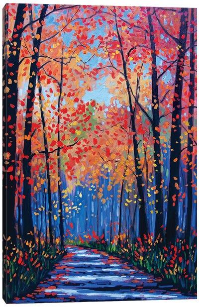 Autumn Path In The Hudson River Valley VIII Canvas Art Print