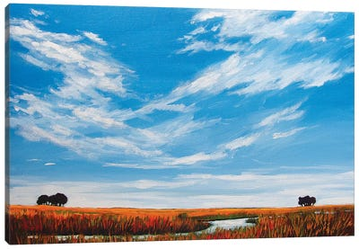 Big Sky Landscape Canvas Art Print