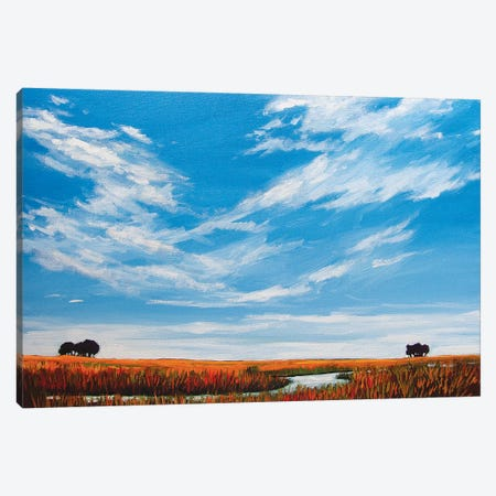 Big Sky Landscape Canvas Print #PTB169} by Patty Baker Canvas Artwork