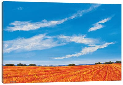 Big Sky over the Plains Canvas Art Print