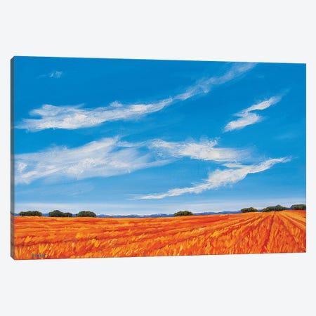 Big Sky over the Plains Canvas Print #PTB170} by Patty Baker Canvas Print