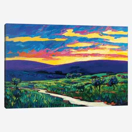 Bouler County Landscape Canvas Print #PTB174} by Patty Baker Canvas Artwork