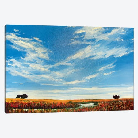 Creek On the Plains with Big Sky Canvas Print #PTB179} by Patty Baker Art Print