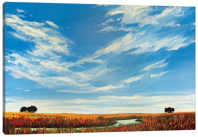 Creek On the Plains with Big Sky Canvas Art Print