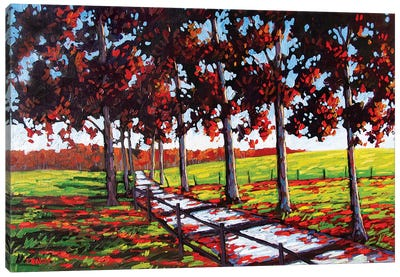 Driveway off River Road, Rhinebeck, NY Canvas Art Print