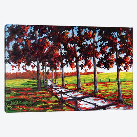 Driveway off River Road, Rhinebeck, NY Canvas Print #PTB180} by Patty Baker Canvas Artwork