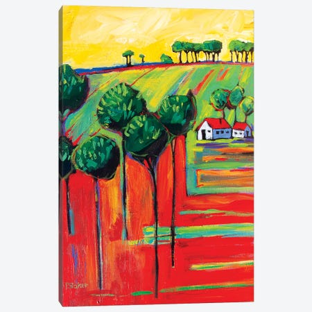 Fields In Fauve II 3-Piece Canvas #PTB185} by Patty Baker Canvas Art Print