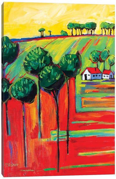 Fields In Fauve II Canvas Art Print