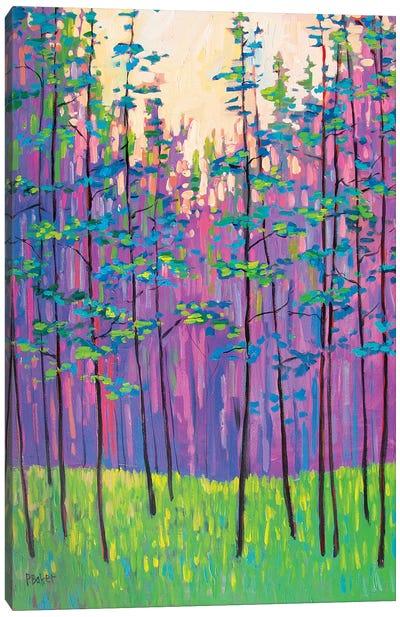 Forest Landscape Canvas Art Print