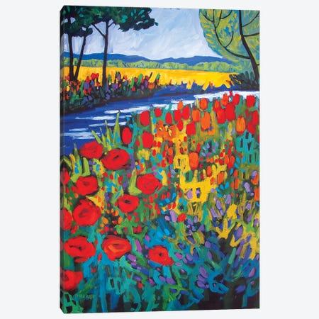 Garden Path Canvas Print #PTB190} by Patty Baker Art Print