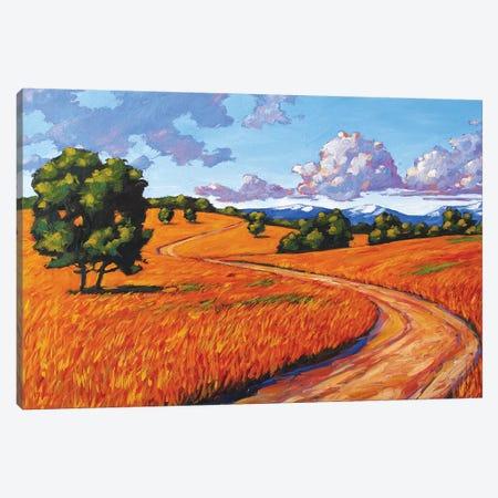 Gold Hill, Boulder County Canvas Print #PTB193} by Patty Baker Art Print