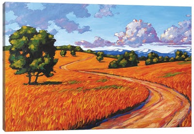 Gold Hill, Boulder County Canvas Art Print