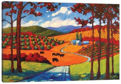 I-25 Young America Road Cows Canvas Art Print