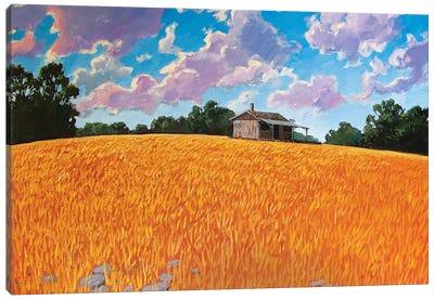 Landscape Under Purple Clouds Canvas Art Print