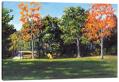 Park Landscape Canvas Art Print