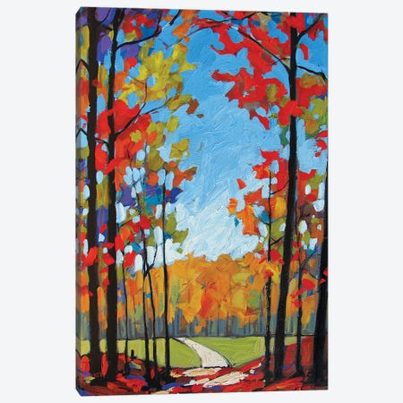 Path Near Old Kinderhook Canvas Print #PTB202} by Patty Baker Canvas Art Print