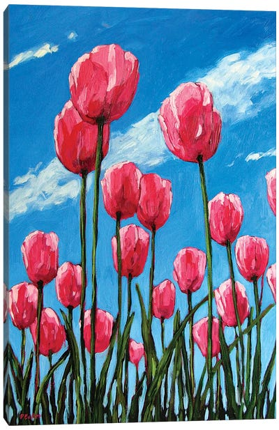 Pink Tulips and Blue Sky Canvas Art Print