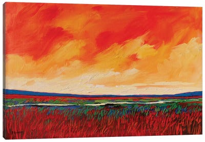 Puerco River, New Mexico Canvas Art Print
