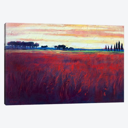 Red Field and Yellow Sky  Canvas Print #PTB207} by Patty Baker Canvas Art
