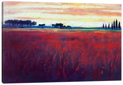 Red Field and Yellow Sky  Canvas Art Print
