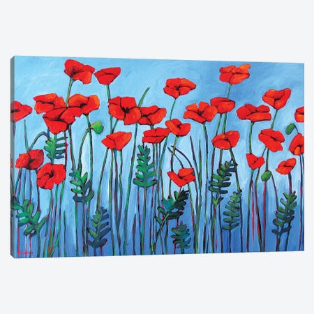 Red Poppies Canvas Print #PTB208} by Patty Baker Canvas Art Print