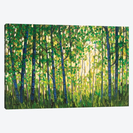 Spring Forest Canvas Print #PTB214} by Patty Baker Art Print