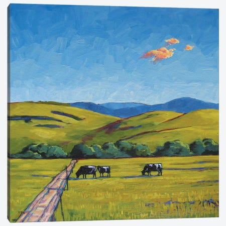 Boulder County Cows 3-Piece Canvas #PTB23} by Patty Baker Art Print