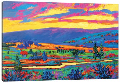 Colorado Fauve Landscape Canvas Art Print
