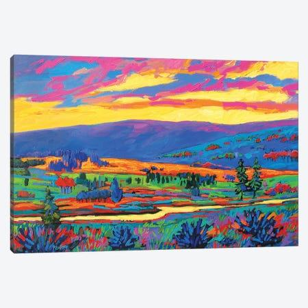 Colorado Fauve Landscape Canvas Print #PTB26} by Patty Baker Canvas Art