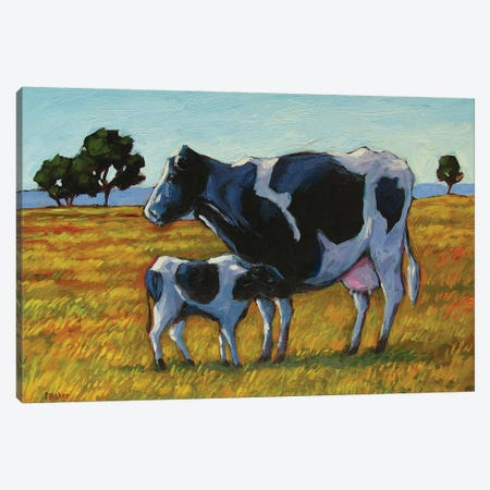 Cow and Calf Canvas Print #PTB29} by Patty Baker Art Print