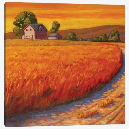Farm Hous in Nebraska 3-Piece Canvas #PTB40} by Patty Baker Art Print