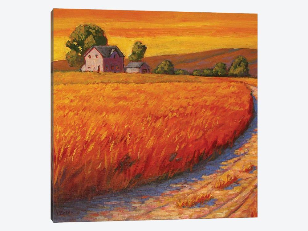 Farm Hous in Nebraska by Patty Baker 1-piece Canvas Art Print