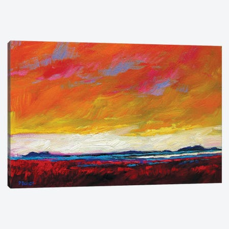 Firey Sky over New Mexico Desert Canvas Print #PTB45} by Patty Baker Canvas Art