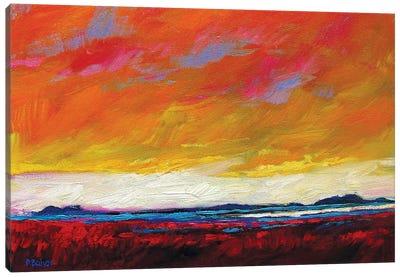 Firey Sky over New Mexico Desert Canvas Art Print