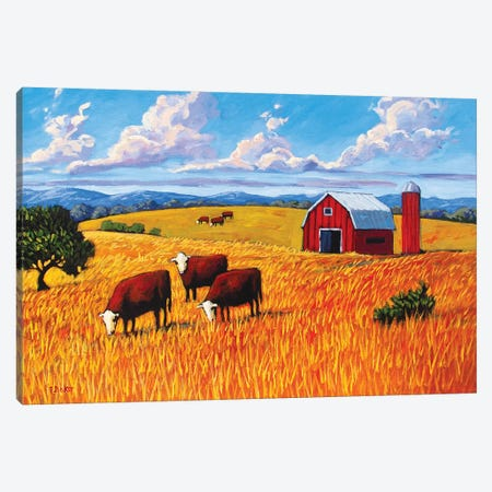 Grazing Cows and Barn Canvas Print #PTB51} by Patty Baker Canvas Art
