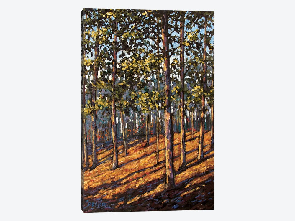 Late Day Light in the Hudson Valley Woods by Patty Baker 1-piece Art Print