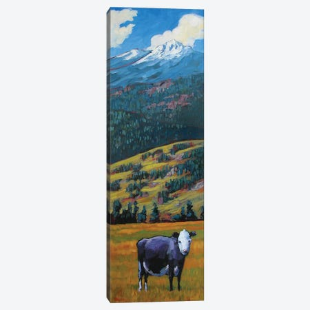 Lone Cow in the San Juan Valley 3-Piece Canvas #PTB75} by Patty Baker Canvas Print