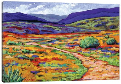 New Mexico Landscape Canvas Art Print