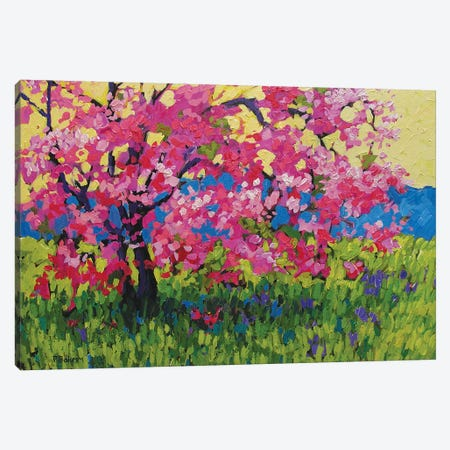 Pink Blossom Tree with Yellow Sky and Blue Mountains Canvas Print #PTB96} by Patty Baker Canvas Art Print
