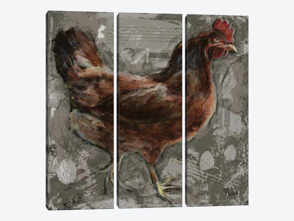 Red Hen by Patti Mann 3-piece Canvas Artwork