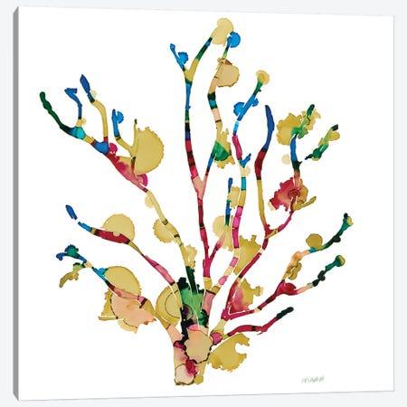 Sea Coral III Canvas Print #PTM15} by Patti Mann Canvas Art