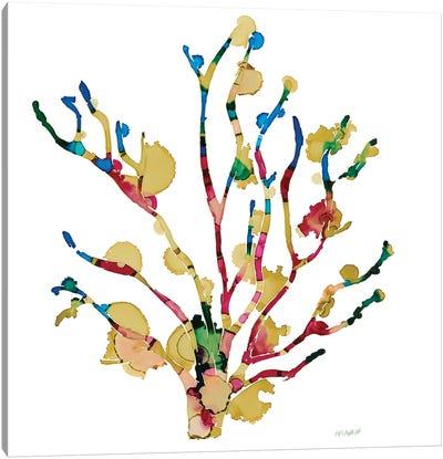 Sea Coral III Canvas Art Print